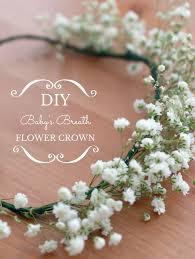 Baby Breath Flowers Diy Baby U0027s Breath Flower Crown Fancier U0027s World