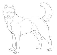 free husky lineart by akakennel on deviantart