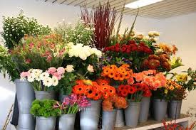flower shops in top 5 florist and flower shops in lagos
