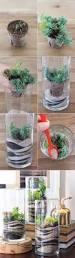 melbourne u2013 kidding around australia best 25 terrarium ideas ideas on pinterest terranium ideas