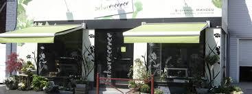 Toiles Pour Stores Bannes Store Exterieur Magasin U2013 Obasinc Com