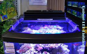 Aquarium Led Lighting Fixtures Unique Led Lighting Fixtures Ship With Color Controllability Gear
