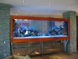 Fish Tank Reception Desk 18 Best Saltwater Fish Tank Images On Pinterest Aquarium Ideas