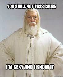 You Shall Not Pass Meme - the best of gandalf s you shall not pass memes 14 pics