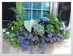 Window Box For Herbs Best 20 Window Boxes Ideas On Pinterest Outdoor Flower Boxes