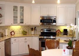Reface Cabinet Doors Cheap Cabinet Doors Door Refacing Enjoyable Cool Kitchen Cabinet