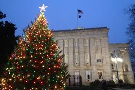 Christmas Tree Raleigh Travel Rolesville Buzz