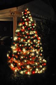 tree white lights decor ideas