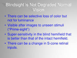 What Is Blind Sight Is Blindsight Just Degraded Normal Vision