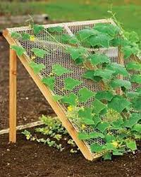 Backyard Vegetable Garden Ideas Best 25 Vertical Vegetable Gardens Ideas On Pinterest Small