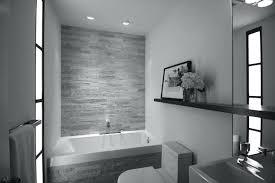 Modern Bathroom Tub Contemporary Bathtub Shower Combo Appealing Modern Bathroom Tub