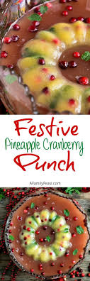 best 25 cranberry punch recipes non alcoholic ideas on