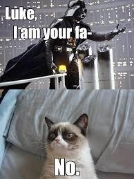 Star Wars Cat Meme - grumpy cat has no time for long melodramatic denial grumpy cat