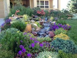 Backyard Xeriscape Ideas Xeriscaping Ideas Outside The Box Xeriscape Ideas For Front Yard