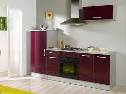 cuisine en violet meuble cuisine violet en photo