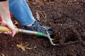 good soil means good vegetables bonnie plants