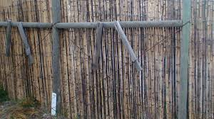 decorating exciting wire fence with bamboo fence roll for