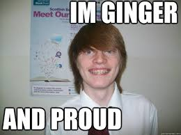 Proud Meme - im ginger and proud ginger and proud quickmeme