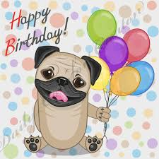 Happy Birthday Pug Meme - pug dog with a happy birthday clipart