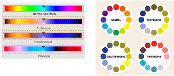 Cause Of Color Blindness Designing For All Users U2014 Why You Should Care About Color Blindness