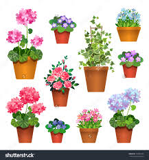 Home Decoration With Flowers Flowers In Pot 32 Nice Decorating With Flowers In Pots Vector