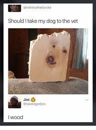 Dog At Vet Meme - should i take my dog to the vet joc i wood meme on esmemes com