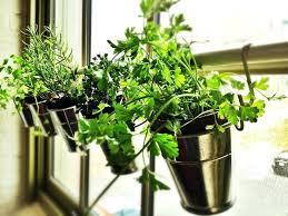 indoor hanging wall garden indoor vertical vegetable garden diy