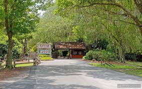 photo gallery for mickey u0027s backyard bbq at disney u0027s fort