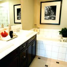 picture ideas for bathroom bathroom decor pictures best of small apartment bathroom decorating