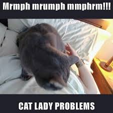 Cat Problems Meme - cat lady problems lolcats lol cat memes funny cats funny
