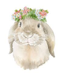 10 best bunny images on pinterest bunny art bunny drawing and