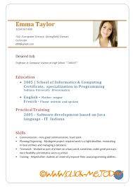 pdf of resume format best cv format sle pdf granitestateartsmarket