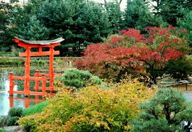 Brooklyn Botanic Gardens by Textscape Torii At The Brooklyn Botanic Garden October 31