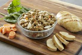 healthy dog healthy you healthy new year with freshpet