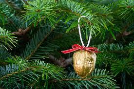 ornament free stock photo a ornament in a tree 8113