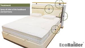 Bed Frame And Mattress How To Exterminate Bed Bugs By Using Ecoraider Youtube