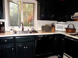 black kitchen cabinets design ideas kitchen excellent diy painted black kitchen cabinets pictures of