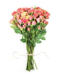 Same Day Flowers Same Day Flowers Same Day Flower Delivery Flower Haul