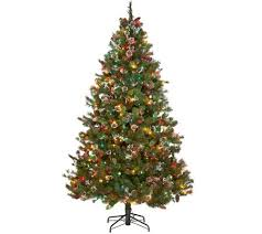 ed on air 7 5 mixed ming tip baby s breath tree by