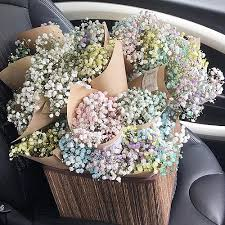 Baby Breath Petite Fleur Beautifully Handcrafted Bouquets Baby U0027s Breath