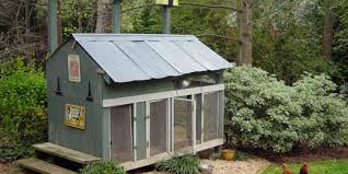 Building Backyard Chicken Coop My Chicken Coops U2013 My Chicken Coops