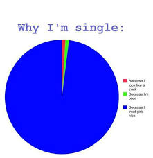 Single Guys Meme - why i am single taken from fb feed rebrn com