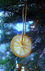 using dried fruit to decorate for the holidays the of