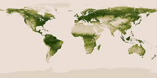 global map earth land cover our world in data