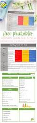 laundry guide bathroom cleaning checklist for teens glue
