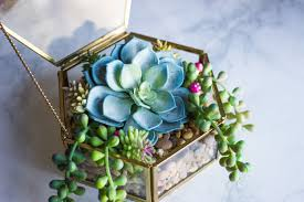diy fake succulent terrariums u2013 hopeless thunder