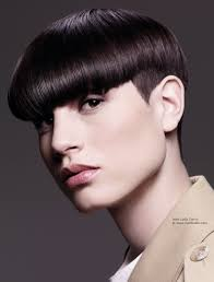 short haircuts above ears short hair clipped into a blunt above the ears bob
