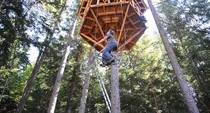 houses with elevators an ingenious bicycle powered treehouse elevator lifts a rider 30