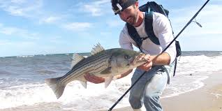 sprinting after striper blitzes on cape cod youtube