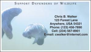 defenders of wildlife manatee checks petchecksdirect